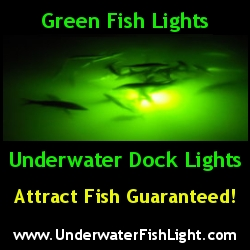Crystal River underwater fishing lights for sale.  Wether fishing from a dock or off the yard these lights will attract fish in the Crystal River area.  Find yours now for sale at crystalriver4sale.com